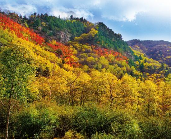 天祝三峡国家森林公园,位于天祝藏族自治县西南部,是国家AAA级旅游景区,总面积138706公顷,森林覆盖率达58%,是甘肃省面积最大的国家级森林公园,属祁连山国家级自然保护区和黄河上游水源涵养区。境内自然风光秀丽迷人,人文景观独具特色,藏传佛教文化深厚:既有巍峨挺拔、陡峻如削的山峰,又有千回百转、奔流不息的河溪;既有终年积雪、洁白如莹的雪山冰川,又有常年温热、神奇独特的药水神泉;既有绵延起伏、碧绿如茵的草原,又有曲径通幽、遮天蔽日的峡谷;既有绵延不断、四季常青的乔灌林木,又有色彩纷呈、芳香四溢的奇花异